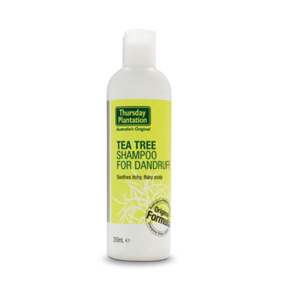 Image for Thursday Plantation Tea Tree Shampoo Anti Dandruff - 250mL from Amcal