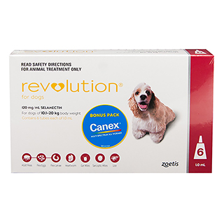 Image for Revolution For Dogs 10.1 - 20kg Red incl. Canex Tabs - 6 Pack from Amcal